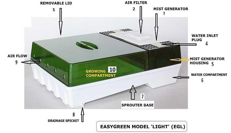 Easygreen Lite